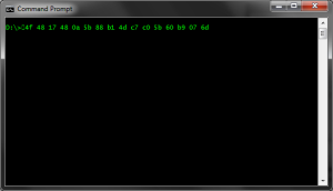 Serial number pasted to command prompt